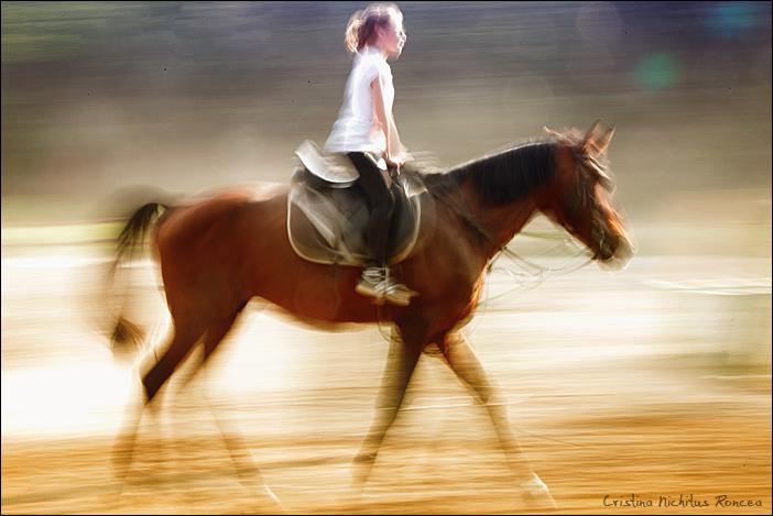 Poveste despre cai 01 - foto Cristina Nichitus Roncea