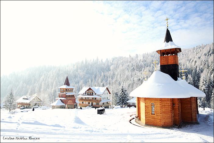 Manastirea Paltin, Petru Voda