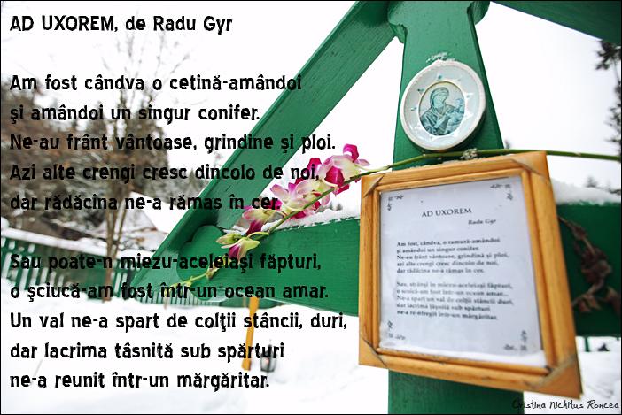 Mormantul lui Radu Gyr de la Manastirea Petru Voda