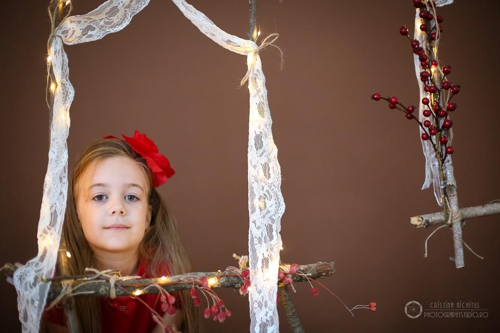 Poveste de iarna - foto Cristina Nichitus Roncea